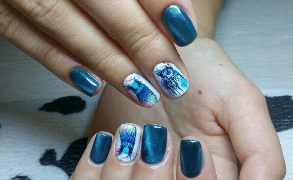 Как нарисовать кошку на ногтях поэтапно фото для начинающих