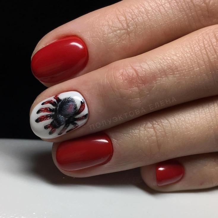 2021 66 фото дизайн ногтей с пауками
