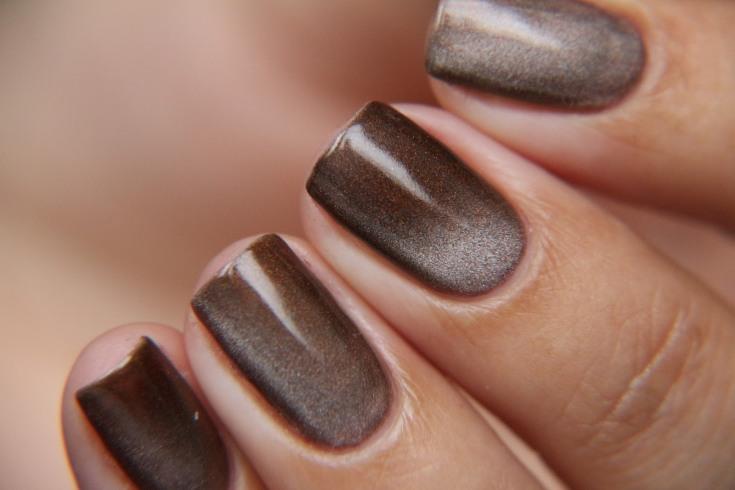 222 фото идеи коричневого маникюра (шоколадный цвет)