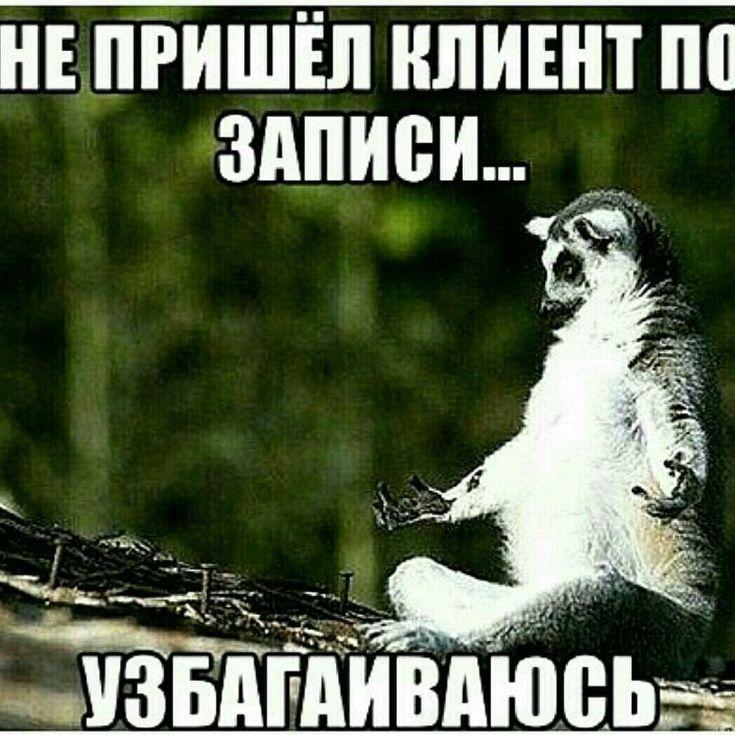 всего русские приколы про маникюрщицу картинки метров
